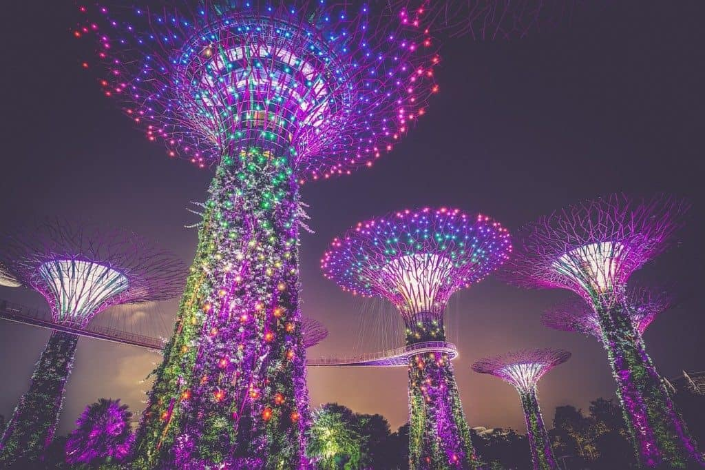 Marina Bay Tree Attraction, Singapore
